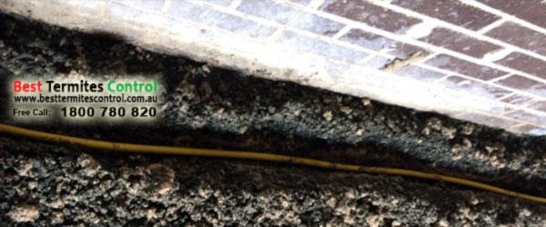 Termite Reticulation System