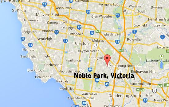 Best Termites Control - Noble Park Termite Inspection