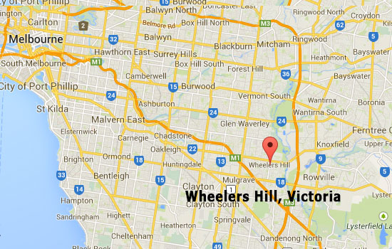 Best Termites Control - Wheelers Hill Termite Inspection