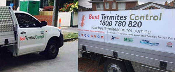Termites Protection and Treatment