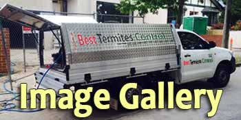 Best Termites Control Image Gallery