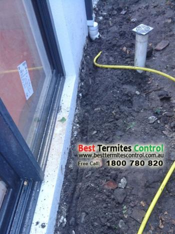 Stop Term Termite Control