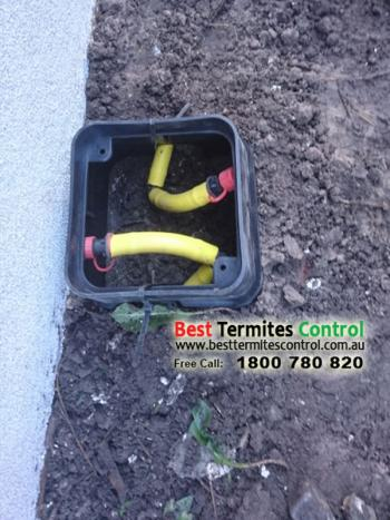 Stop Term Termite Protection in Melbourne