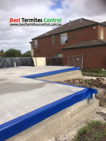 Homeguard blue sheets for Part B Termites Treatment