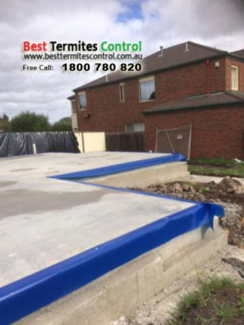 Termite Inspection Melbourne