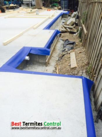 Termite Protection in Melbourne with HomeGuard Blue