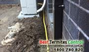 Termite Protection Solutions Melbourne - Reticulation System
