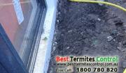 Stop Term Termite Reticulation System