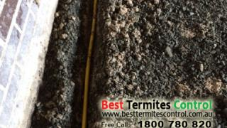 Installed Termites Reticulation system in Burwood