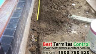 Termite Protection Solutions - Reticulation System