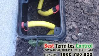 Stop Term Termite Protection Systems